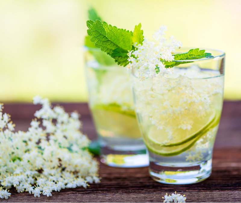 Image of two Elderberry Floral drinks for trend article about botanical and floral flavors